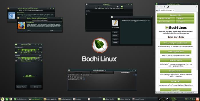 The Bodhi Linux desktop