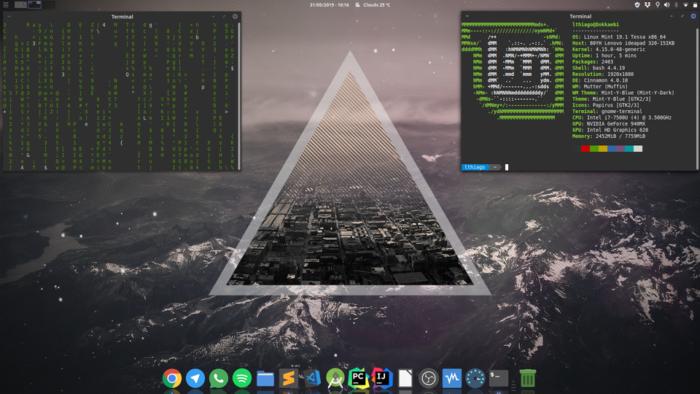 Picture showing a customized Cinnamon desktop